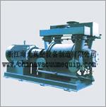 2BE series liquid ring vacuum pump
