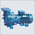 SKA(2BV) series liquid ring type vacuum pump